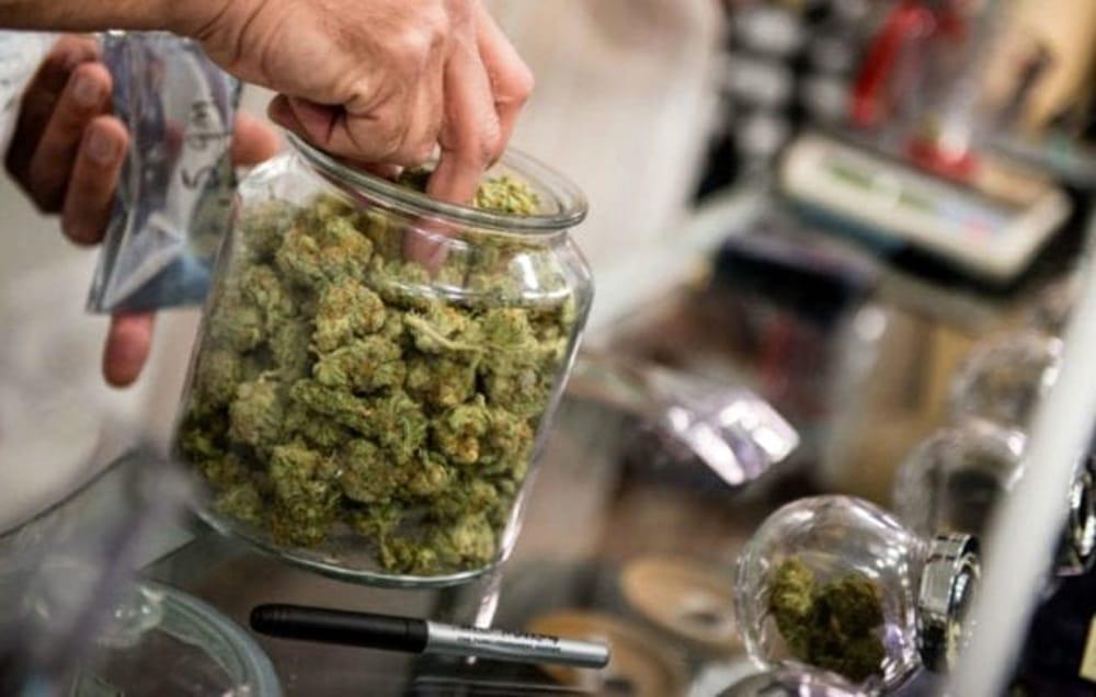 Uno smart shop in attivita': la cannabis ricca di CBD e CBDA viene venduta legalmente in italia.