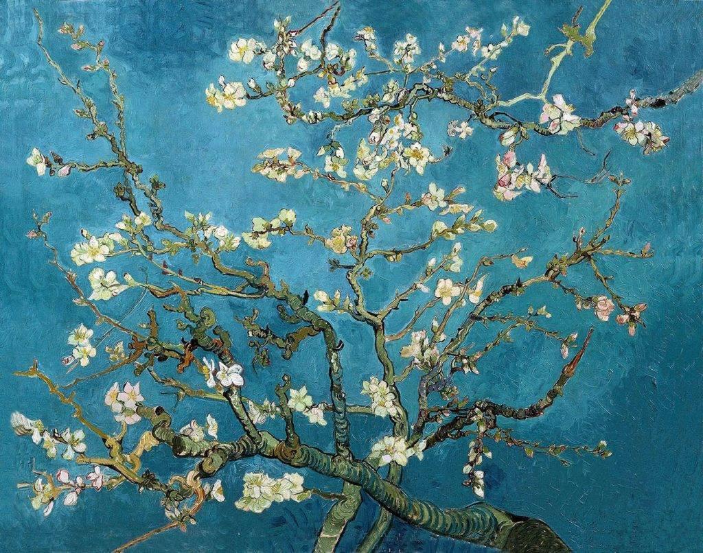 van-gogh-mandorlo-in-fiore dal web https://www.vangoghmuseum.nl