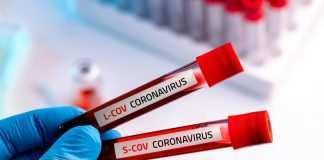 Coronavirus (Corriere della Calabria)