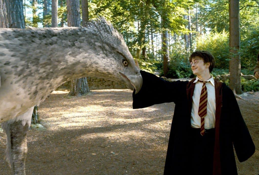 Harry Potter e Fierobecco © eateseseirimastoconharry.com