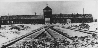 testimoni di Auschwitz photo credits: web