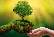 Earth Day © cryptonomist.ch