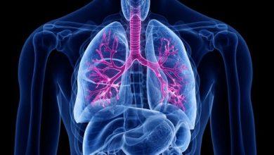 Patologie bronchiali: asma e BPCO